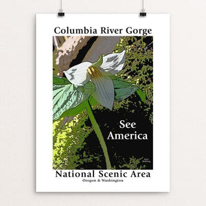 "Columbia River Gorge National Scenic Area 3 by Jane Rohling 12"" by 16"" Print / Unframed Print See America"