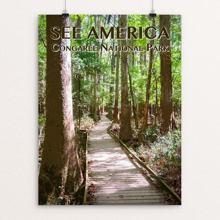 "Congaree National Park by Zack Frank 12"" by 16"" Print / Unframed Print See America"