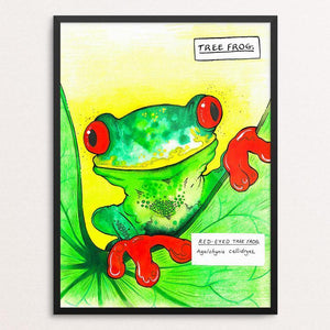 "Curious Tree Frog by Rob Wilkinson 12"" by 16"" Print / Framed Print Creative Action Network"