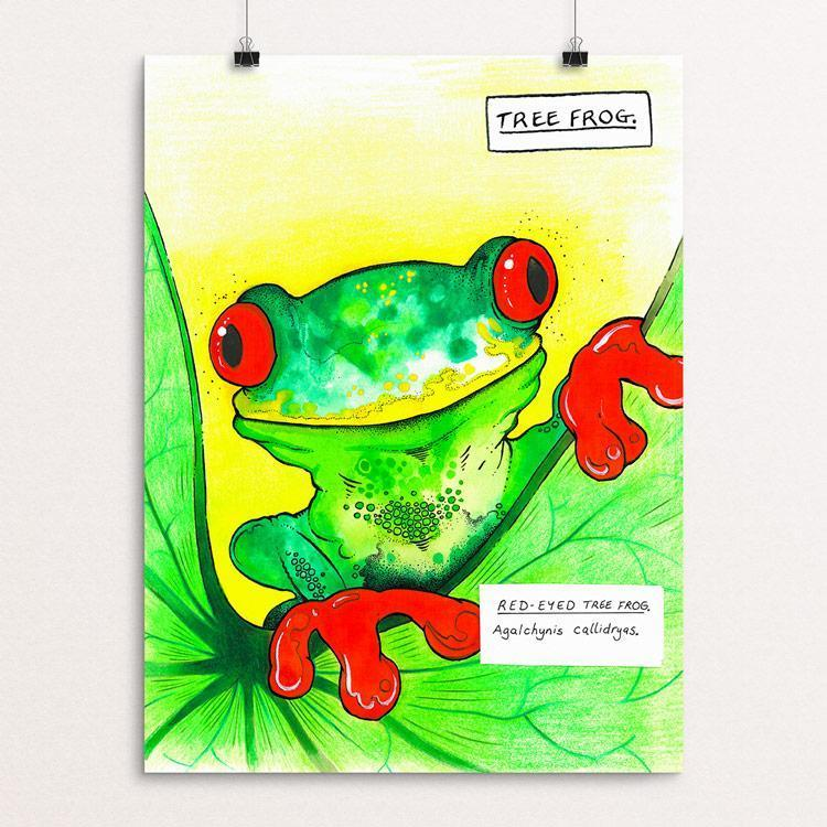 "Curious Tree Frog by Rob Wilkinson 12"" by 16"" Print / Unframed Print Creative Action Network"