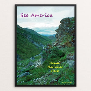 "Denali National Park and Preserve 2 by Anthony Chiffolo 18"" by 24"" Print / Framed Print See America"