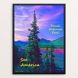 "Denali National Park and Preserve 3 by Anthony Chiffolo 18"" by 24"" Print / Framed Print See America"