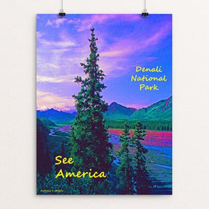 "Denali National Park and Preserve 3 by Anthony Chiffolo 18"" by 24"" Print / Unframed Print See America"