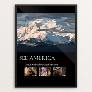 "Denali National Park and Preserve by Tim Rains 12"" by 16"" Print / Framed Print See America"