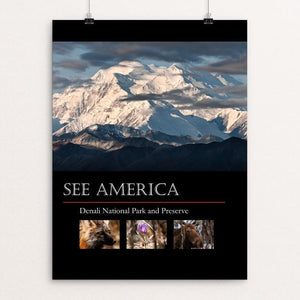 "Denali National Park and Preserve by Tim Rains 12"" by 16"" Print / Unframed Print See America"