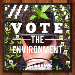 "Eat Local, Think Global & Vote the Environment by Ellen Hallman 12"" by 12"" Print / Framed Print Vote the Environment"