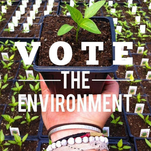 Eat Local, Think Global & Vote the Environment by Ellen Hallman