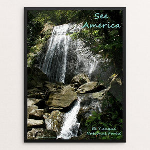 "El Yunque National Forest by Anthony Chiffolo 12"" by 16"" Print / Framed Print See America"
