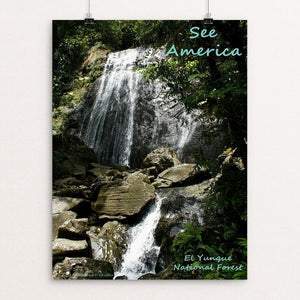 "El Yunque National Forest by Anthony Chiffolo 12"" by 16"" Print / Unframed Print See America"