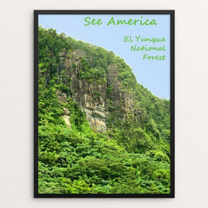 "El Yunque National Forest by Anthony Chiffolo 18"" by 24"" Print / Framed Print See America"