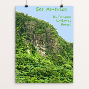 "El Yunque National Forest by Anthony Chiffolo 18"" by 24"" Print / Unframed Print See America"