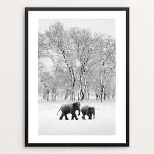 "Elephants in the snow by Richard Alton 12"" by 16"" Print / Framed Print Creative Action Network"