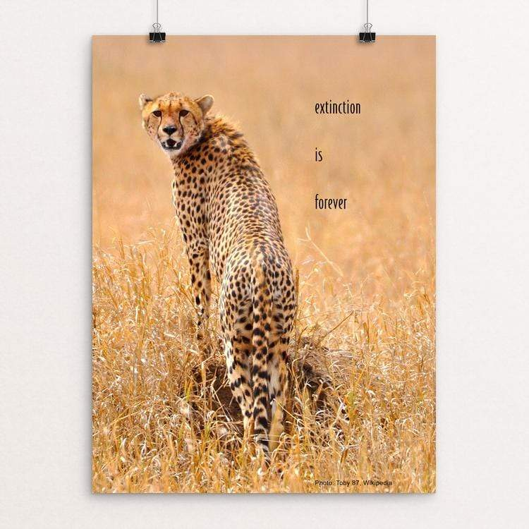 "Extinction is Forever - Cheetah by Vivian Chang 18"" by 24"" Print / Unframed Print Creative Action Network"