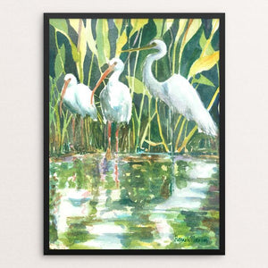 "Florida Everglades by Hannah Ineson 12"" by 16"" Print / Framed Print Creative Action Network"