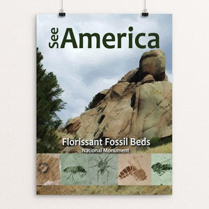 "Florissant Fossil Beds by Arlene Lambert 12"" by 16"" Print / Unframed Print See America"