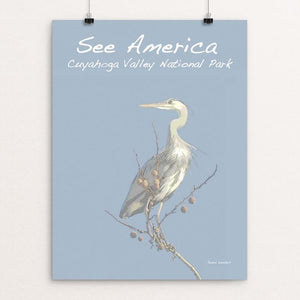 "Great Blue Heron, Cuyahoga Valley National Park by Jennie Lambert 12"" by 16"" Print / Unframed Print See America"