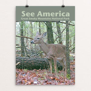 "Great Smoky Mountains National Park 3 by Jennie Lambert 12"" by 16"" Print / Unframed Print See America"