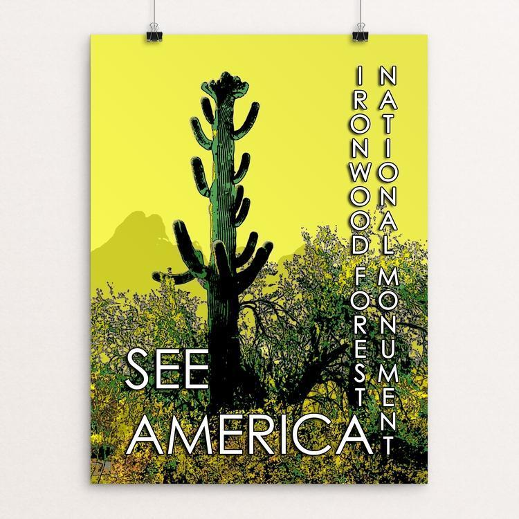 "Ironwood Forest National Monument by William Dabbs 12"" by 16"" Print / Unframed Print See America"