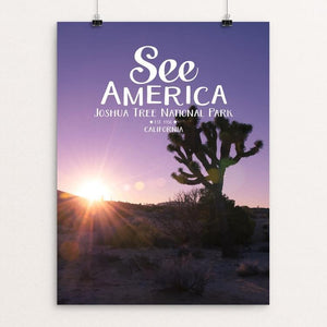 "Joshua Tree National Park 2 by Daniel Gross 18"" by 24"" Print / Unframed Print See America"