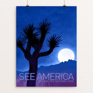 "Joshua Tree National Park by Adam S. Doyle 12"" by 16"" Print / Unframed Print See America"