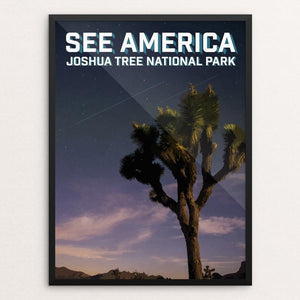 "Joshua Tree National Park by Daniel Gross 12"" by 16"" Print / Framed Print See America"