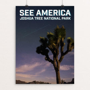 "Joshua Tree National Park by Daniel Gross 12"" by 16"" Print / Unframed Print See America"