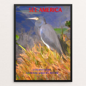 "Loxahatchee National Wildlife Refuge by Walter Mularz 12"" by 16"" Print / Framed Print See America"