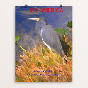 "Loxahatchee National Wildlife Refuge by Walter Mularz 12"" by 16"" Print / Unframed Print See America"