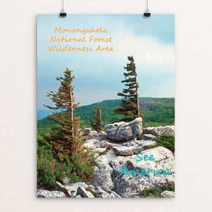 "Monongahela National Forest Wilderness Area 2 by Anthony Chiffolo 18"" by 24"" Print / Unframed Print See America"