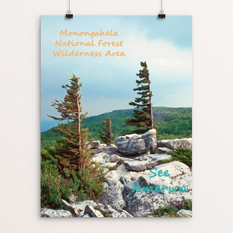 Monongahela National Forest Wilderness Area 2 by Anthony Chiffolo