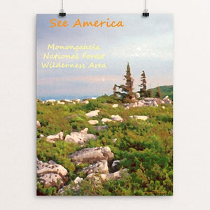 "Monongahela National Forest Wilderness Area 3 by Anthony Chiffolo 18"" by 24"" Print / Unframed Print See America"