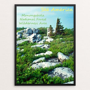 "Monongahela National Forest Wilderness Area 4 by Anthony Chiffolo 18"" by 24"" Print / Framed Print See America"