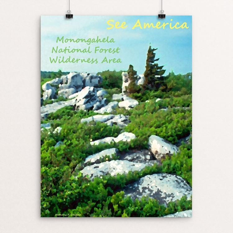 "Monongahela National Forest Wilderness Area 4 by Anthony Chiffolo 18"" by 24"" Print / Unframed Print See America"