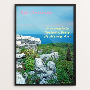 "Monongahela National Forest Wilderness Area 5 by Anthony Chiffolo 18"" by 24"" Print / Framed Print See America"
