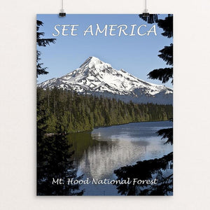 "Mount Hood National Forest by Marcia Brandes 12"" by 16"" Print / Unframed Print See America"