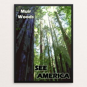 Muir Woods National Monument by Eitan S. Kaplan