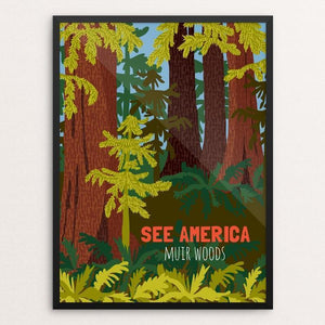 "Muir Woods National Monument by Shayna Roosevelt 12"" by 16"" Print / Framed Print See America"