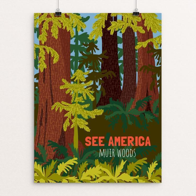 "Muir Woods National Monument by Shayna Roosevelt 12"" by 16"" Print / Unframed Print See America"