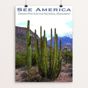 "Organ Pipe Cactus National Monument 2 by Ann Huston 12"" by 16"" Print / Unframed Print See America"