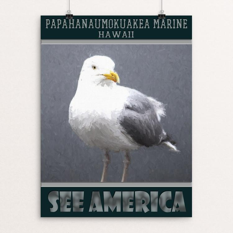 "Papahanaumokuakea Marine by Sheri Emerson 12"" by 16"" Print / Unframed Print See America"