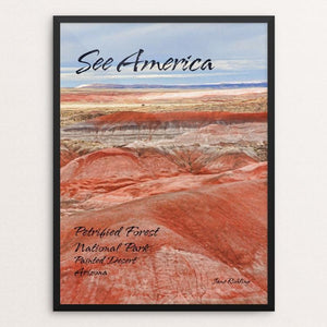 "Petrified Forest National Park 2 by Jane Rohling 12"" by 16"" Print / Framed Print See America"