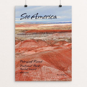 Petrified Forest National Park 2 by Jane Rohling