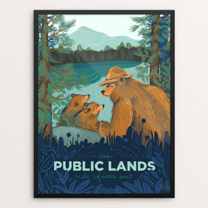 "Public Lands by Amanda Lenz 12"" by 16"" Print / Framed Print What Makes America Great"