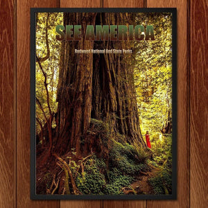Redwood National and State Parks 2 by Mario Vaden
