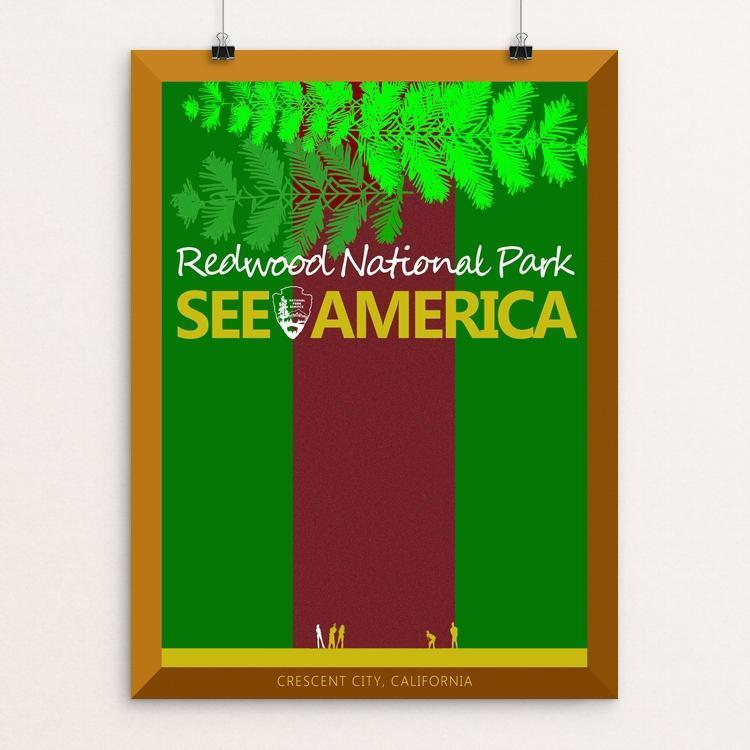 "Redwood National and State Parks by Bob Rubin 12"" by 16"" Print / Unframed Print See America"