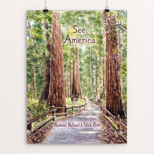 "Redwood National and State Parks by Elizabeth Kennen 12"" by 16"" Print / Unframed Print See America"