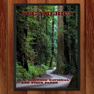 "Redwood National and State Parks by Mario Vaden 12"" by 16"" Print / Framed Print See America"
