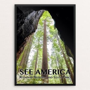 "Redwood National and State Parks by Zack Frank 12"" by 16"" Print / Framed Print See America"