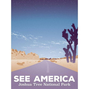 Road Trip, Joshua Tree National Park by Victor Moreno