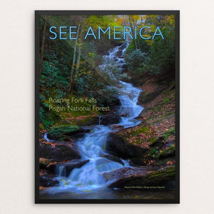 "Roaring Fork Falls, Pisgah National Forest by Susan Newman 12"" by 16"" Print / Framed Print See America"
